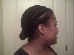 Flat Twists Natural Hair 2