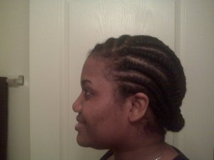 Flat Twists Natural Hair 3