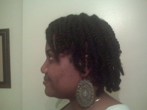 Twisted Updo Natural Hair 5